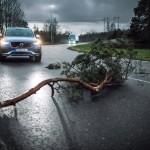 '자동차끼리 말한다' 볼보, 유럽서 차량 간 통신 기능 첫 도입
