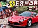 f8 트리뷰토